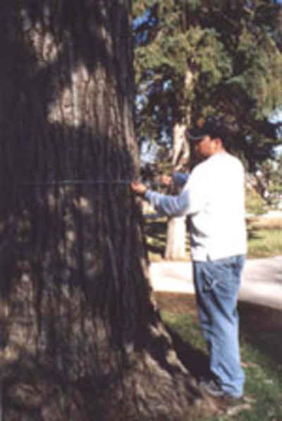 Jason Phelps GPS mapping trees on campus