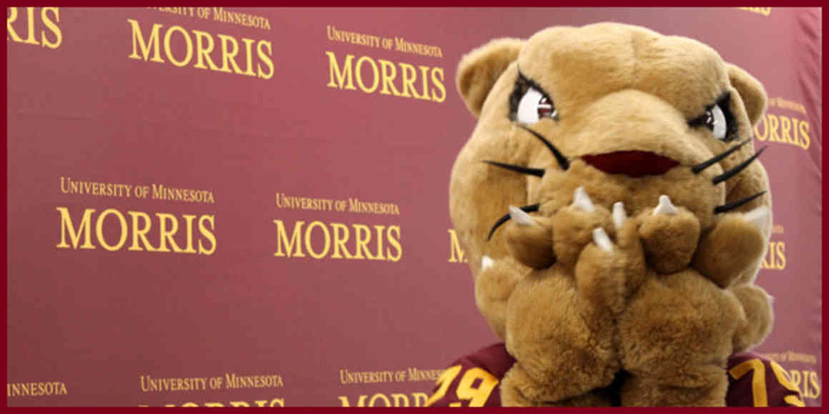 Pounce, the cougar mascot, holds their paws over their mouth in excitement.